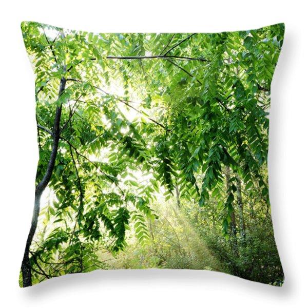 Sun Rays through Black Walnut Leaves Throw Pillow by Thomas R Fletcher