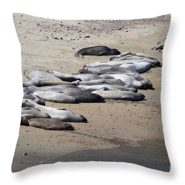 Sunbathing Elephant Seals Along A Beach At Point Reyes California . 7D16063 Throw Pillow by Wingsdomain Art and Photography