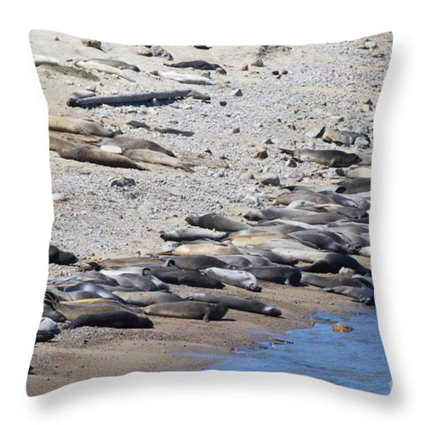 Sunbathing Elephant Seals Along A Beach At Point Reyes California . 7d16065 Throw Pillow by Wingsdomain Art and Photography