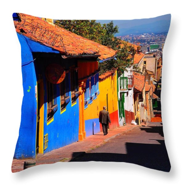 Sunday Safety Throw Pillow by Skip Hunt