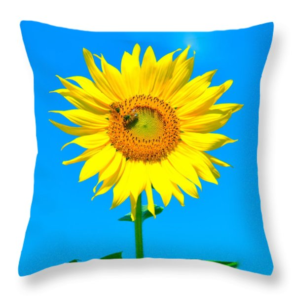 Sunflower And Bee Throw Pillow by Debbi Granruth