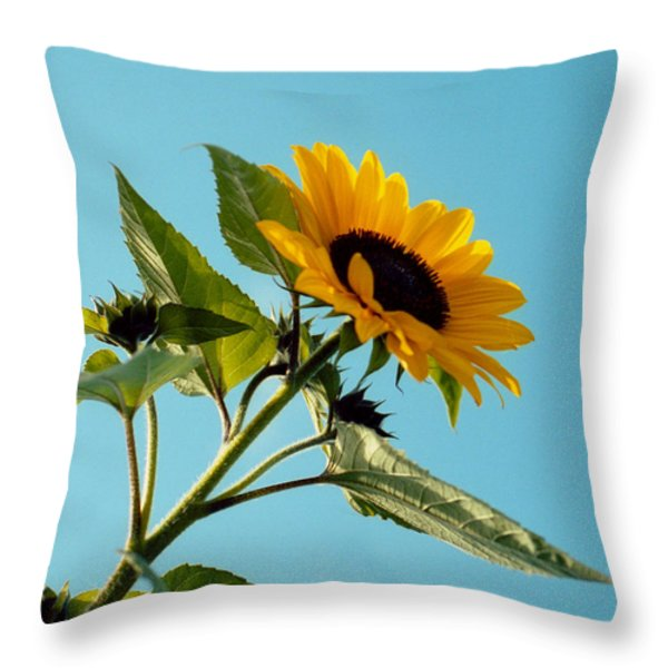 Sunflower And Blue Sky Throw Pillow by Marcio Faustino