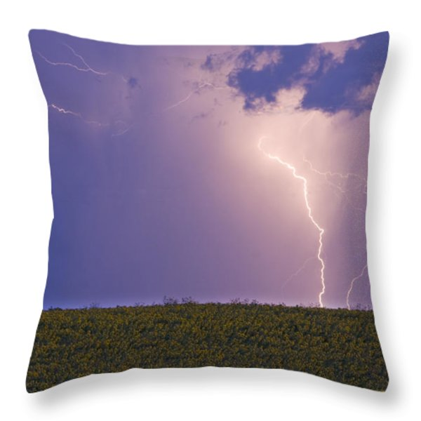 Sunflower Fields Lightning Storm Nature Print Throw Pillow by James BO  Insogna
