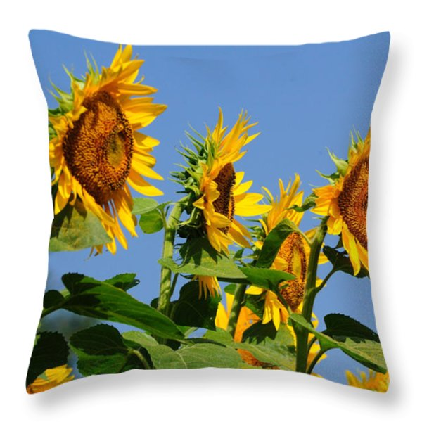 Sunflowers Looking East Throw Pillow by Edward Sobuta