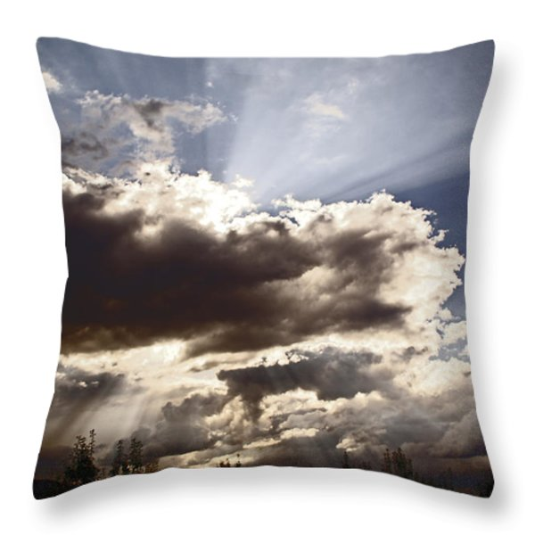 Sunlight And Stormy Skies Throw Pillow by Mick Anderson