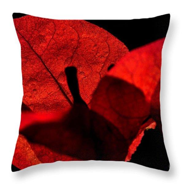 Sunlight Behind The Petals Throw Pillow by Kaye Menner