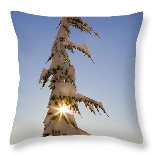 Sunlight Through Snow-covered Tree Throw Pillow by Craig Tuttle