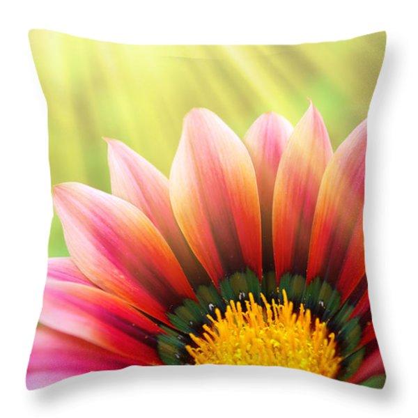 Sunny Daisy Throw Pillow by Carlos Caetano