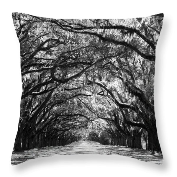 Sunny Southern Day - Black and White Throw Pillow by Carol Groenen