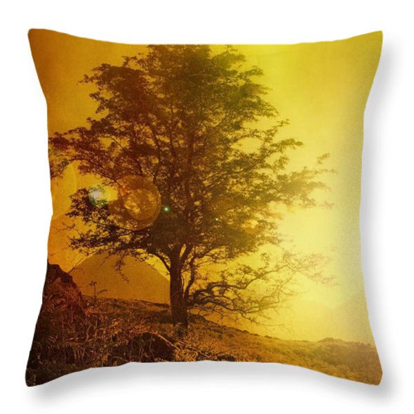 Sunrise Flare Throw Pillow by Svetlana Sewell