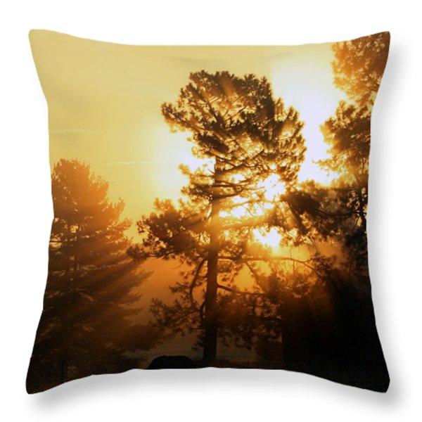 Sunrise Throw Pillow by Karen Harrison