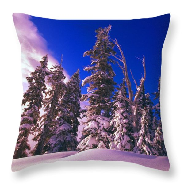 Sunrise Over Snow-covered Pine Trees Throw Pillow by Natural Selection Craig Tuttle