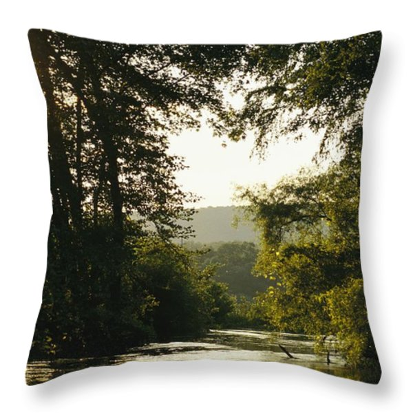 Sunset Above A Riparian Forest Throw Pillow by Raymond Gehman