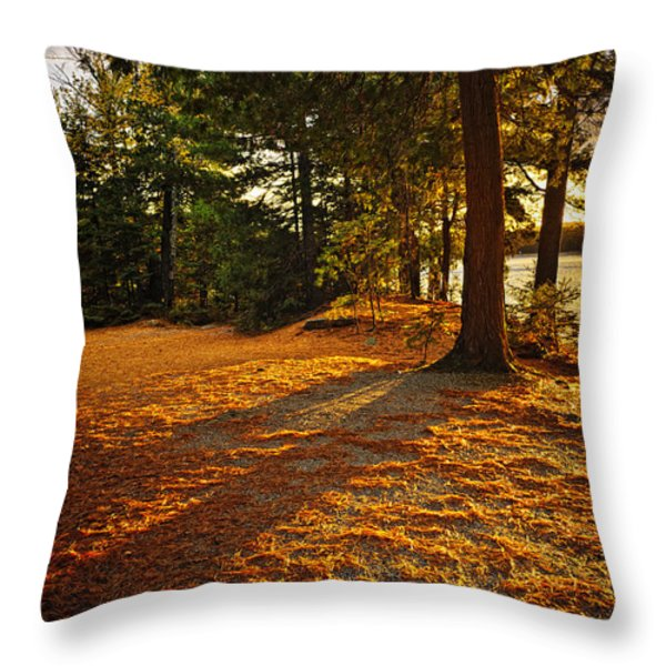 Sunset In Woods At Lake Shore Throw Pillow by Elena Elisseeva
