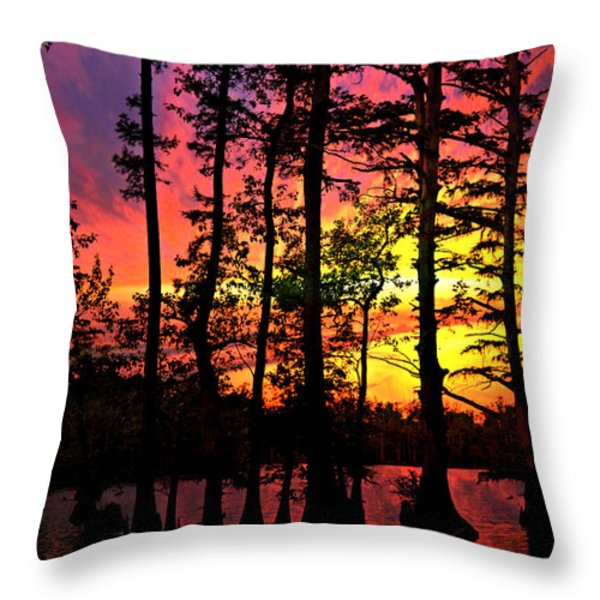 Sunset On Horseshoe Lake 1 Throw Pillow by Marty Koch