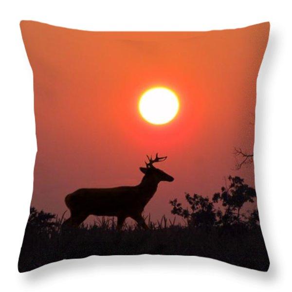 Sunset Silhouette Throw Pillow by David Dehner