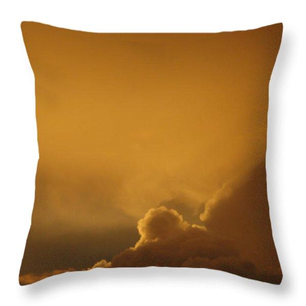 Sunset Skies Throw Pillow by Anahi DeCanio