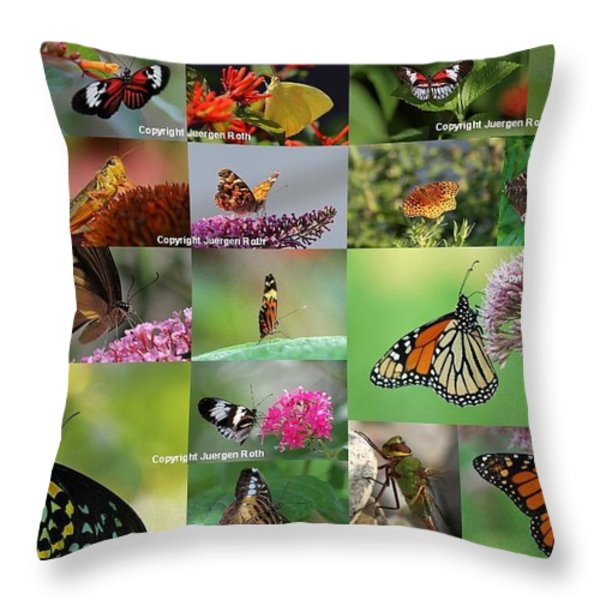 Sunshining Love Bugs Throw Pillow by Juergen Roth