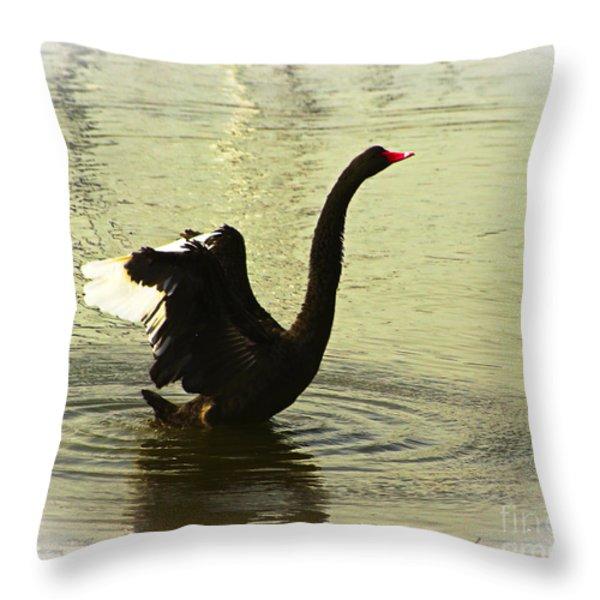 Swan Dance 3 Throw Pillow by Blair Stuart