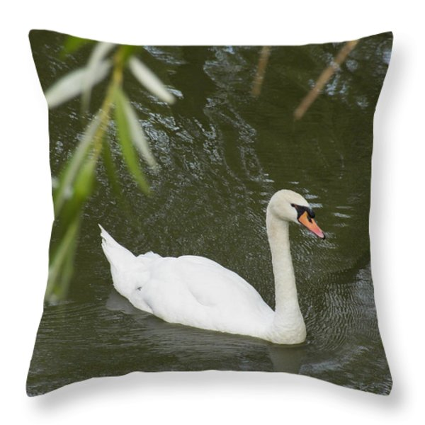 Swan Enjoying A Swim Throw Pillow by Corinne Elizabeth Cowherd