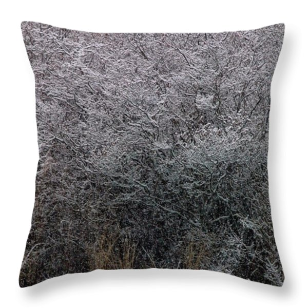 Swans At Mill Pond Yarmouth On Cape Cod Throw Pillow by Matt Suess