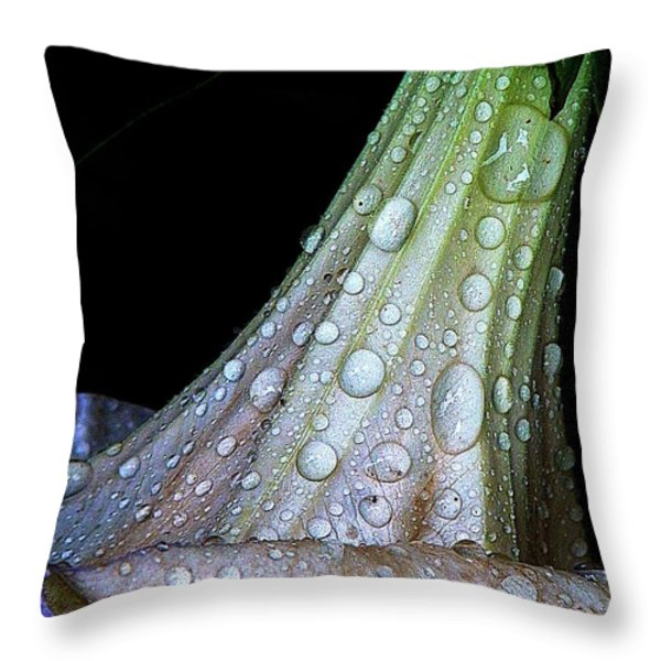 Sweet And Rainy Throw Pillow by Chris Berry