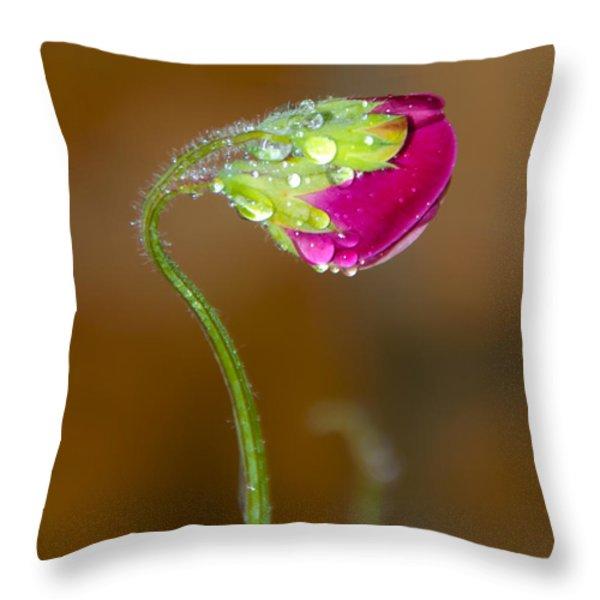 Sweet Pea Throw Pillow by Svetlana Sewell