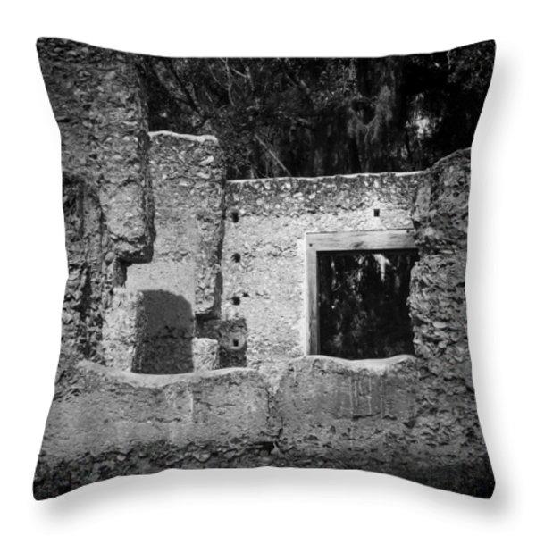 Tabby Ruins Throw Pillow by Lynn Palmer