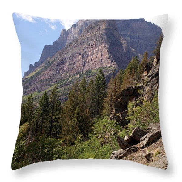 Tail In Glacier Throw Pillow by Marty Koch
