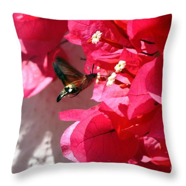 Taking The Nectar Throw Pillow by John Chatterley
