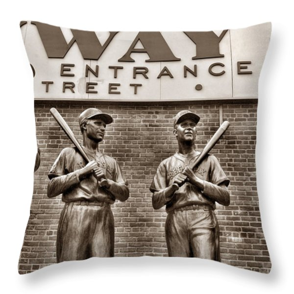 Teammates 2 Throw Pillow by Joann Vitali