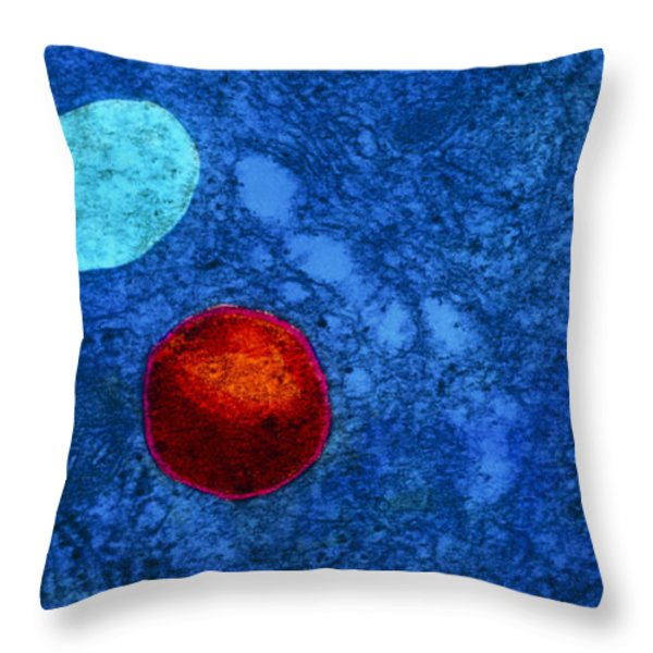 Tem Of Primary Lysosome In Liver Cellsc7036 Throw Pillow by CNRI and SPL and Photo Researchers