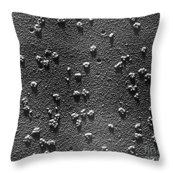 Tem Of Rabbit Reticulocyte Polyribosomes Throw Pillow by Omikron