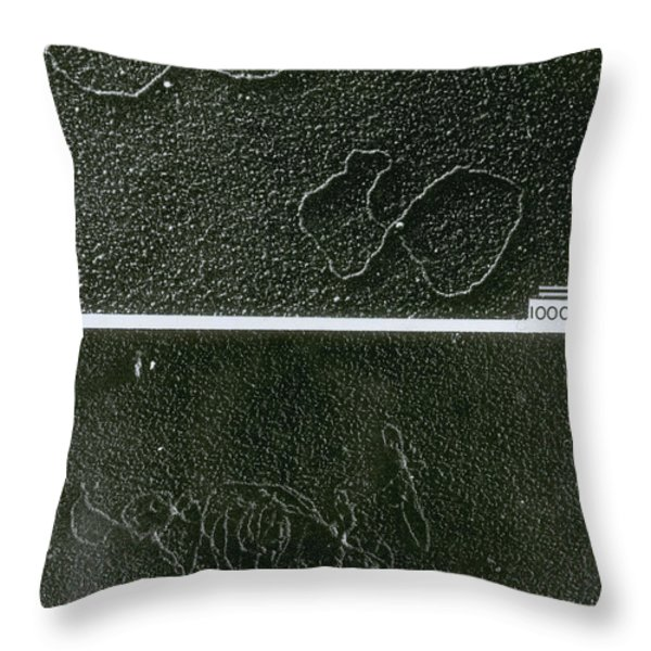 Tems Of Dna And Reaction Throw Pillow by Omikron