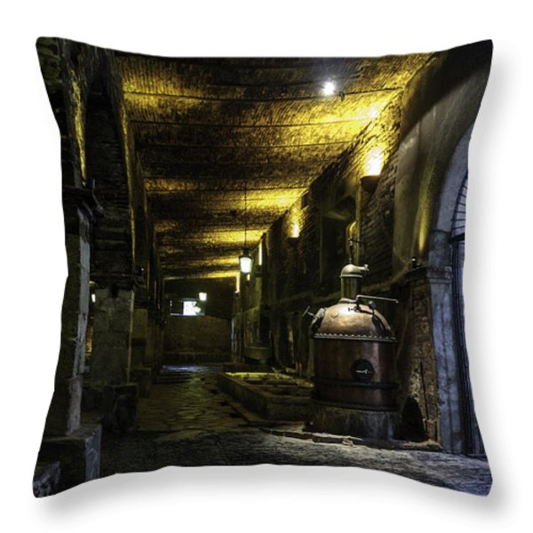Tequilera No. 2 Throw Pillow by Lynn Palmer