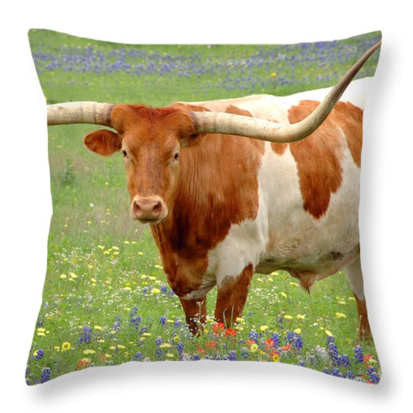 Texas Longhorn Standing in Bluebonnets Throw Pillow by Jon Holiday