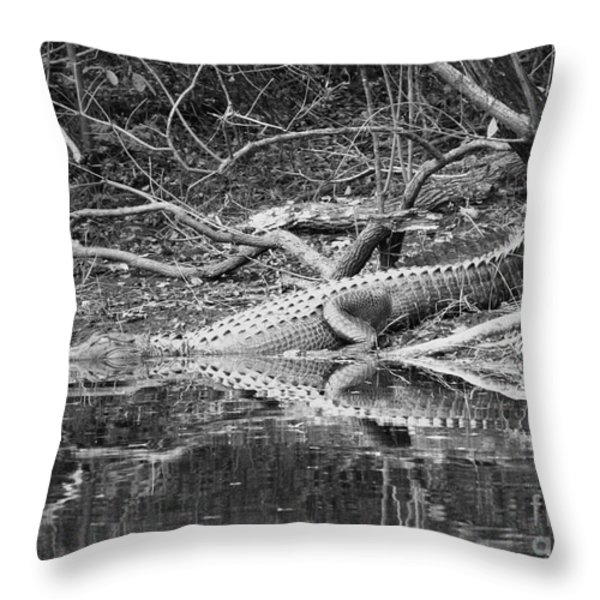 The Beast that Lives under the Bridge Throw Pillow by Carol Groenen