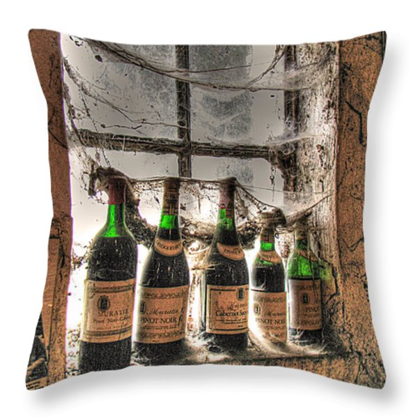 The Cellar Window Throw Pillow by William Fields