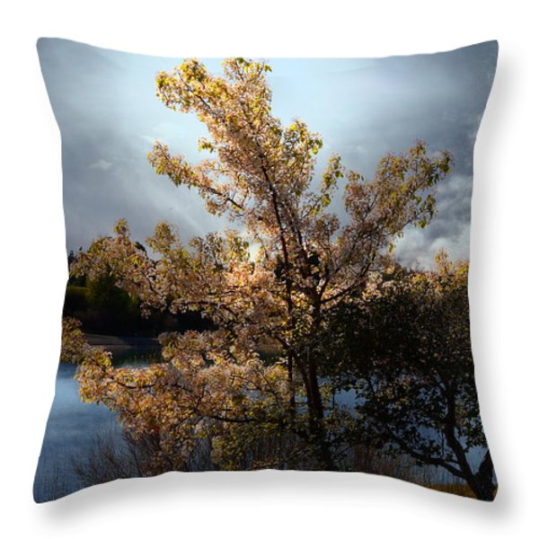The Cherry Blossom Tree . 7d12703 Throw Pillow by Wingsdomain Art and Photography