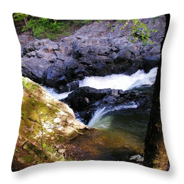 The Chutes At Union Village Throw Pillow by Sherman Perry