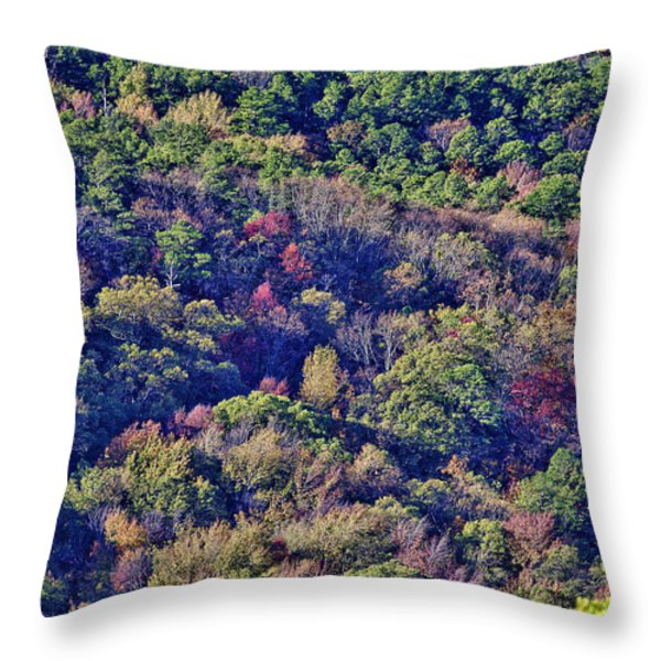 The Colors Of Autumn Throw Pillow by Douglas Barnard