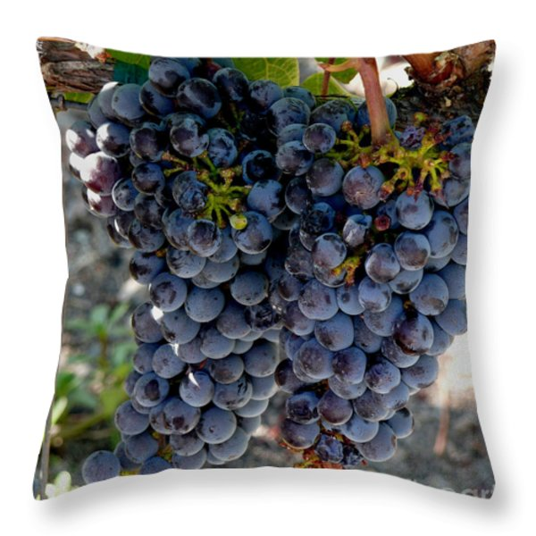 The Concord Throw Pillow by Richard Ortolano