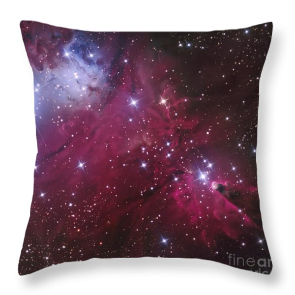 The Cone Nebula And Christmas Tree Throw Pillow by Don Goldman