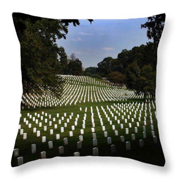 The Cost Throw Pillow by Greg and Chrystal Mimbs