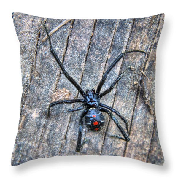 The Dangerous Adolescent  Throw Pillow by JC Findley