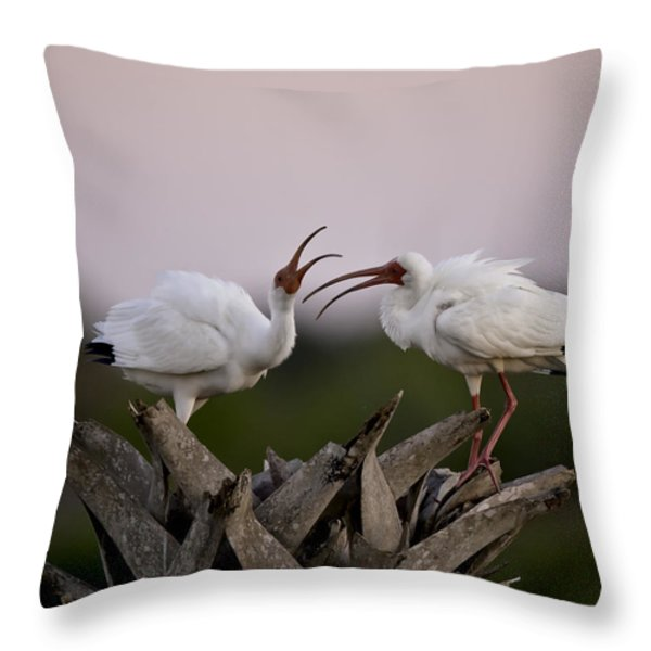 The Debate Throw Pillow by Rob Travis