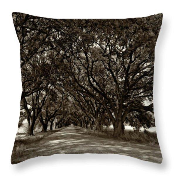 The Deep South bw Throw Pillow by Steve Harrington