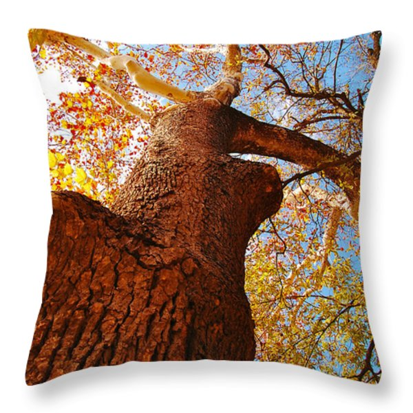 The Deer  Autumn Leaves Tree Throw Pillow by Peggy  Franz