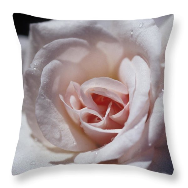 The Delicate Pale Pink Petals Throw Pillow by Jason Edwards