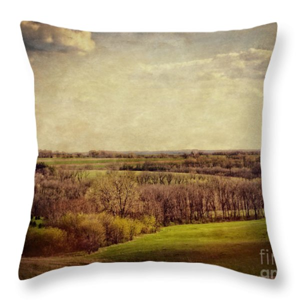 The Driftless Zone Throw Pillow by Mary Machare